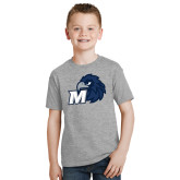 Youth Grey T-Shirt-Hawk with M