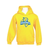 Youth Gold Fleece Hoodie-Misericordia Official Logo