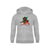 State Youth Grey Fleece Hood-Devils