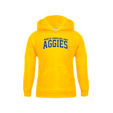 Youth Gold Fleece Hoodie-Arched North Carolina A&T Aggies