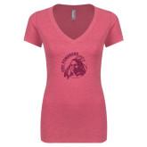Next Level Ladies Vintage Pink Tri Blend V-Neck Tee-Primary Mark Glitter