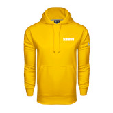 Under Armour Gold Performance Sweats Team Hoodie-NAVS