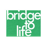 Bridge to Life Teal 50/pkg-