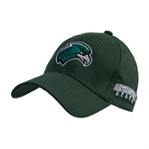Dark Green Heavyweight Twill Pro Style Hat-RiverHawk Head