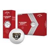 Nike 20XI Tour Level Distance Golf Balls 12/pkg-Arched Oakland w/ Grizzly Head