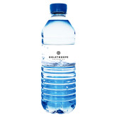 Water Bottle Labels 10/pkg-Primary University Logo
