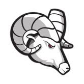Small Magnet-Ram Head