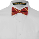 Garnet and Gold Striped Bow Tie-