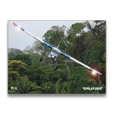 24 x 18 Poster-PC-6 Over Trees