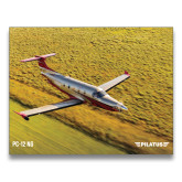 24 x 36 Poster-PC-12 NG Over Blurry Field