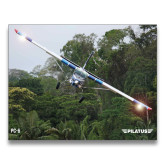 24 x 36 Poster-PC-6 Over Trees