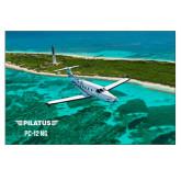 24 x 36 Poster-PC-12 NG Island Shore