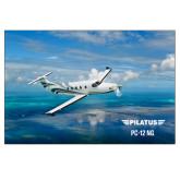 24 x 36 Poster-PC-12 NG Ocean View