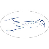 Super Large Decal-, 24 inches wide