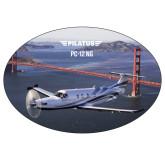 Super Large Decal-PC-12 NG Bridge View