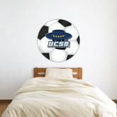 3 ft x 3 ft Fan WallSkinz-Primary on Soccer Ball