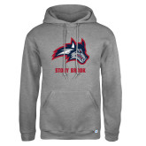 Russell DriPower Grey Fleece Hoodie-Wolfie Head and Stony Brook