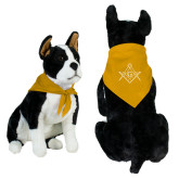 Gold Pet Bandana-Square and Compass with G