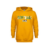 Youth Gold Fleece Hoodie-Distressed Softball