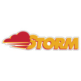 Extra Large Decal-Storm Secondary Logo, 18 inches wide