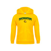 Youth Gold Fleece Hoodie-Arched Southeastern Louisiana