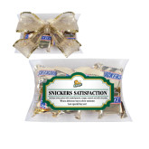 Snickers Satisfaction Pillow Box-Lions w/Lion