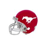 Riddell Replica Red Mini Helmet-Official Logo