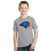 Youth Grey T-Shirt-Hawk Head