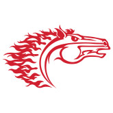 Extra Large Decal-Horse Head, 18 in. wide