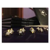 11 x 14 Photographic Print-Sigma Pi Badges Image