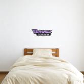 1 ft x 2 ft Fan WallSkinz-Stonehill Skyhawks