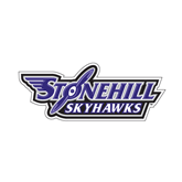 Large Decal-Stonehill Skyhawks, 12 in Wide