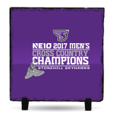 Photo Slate-2017 Mens Cross Country Champions