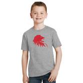 Youth Grey T-Shirt-Lion Head