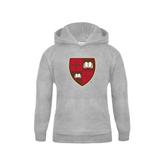Youth Grey Fleece Hood-Official Shield