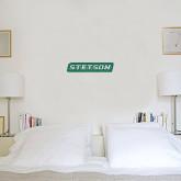 6 in x 1 ft Fan WallSkinz-Stetson