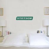 6 in x 2 ft Fan WallSkinz-Stetson