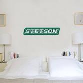 1 ft x 3 ft Fan WallSkinz-Stetson