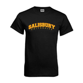 Black T Shirt-Arched Salisbury University