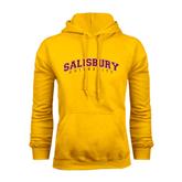 Gold Fleece Hoodie-Arched Salisbury University
