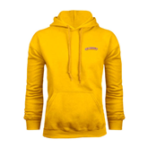 Gold Fleece Hoodie-Arched Salisbury University
