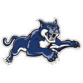 Extra Large Decal-Wildcat Logo, 18 inches wide