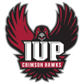 Extra Large Decal-IUP Hawk Wings, 18 inches tall