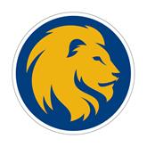Medium Magnet-Official Logo