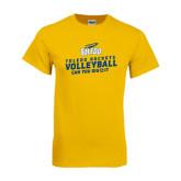 Gold T Shirt-Volleyball