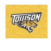 Small Decal-Towson Yellow Tiger Stripe, 6 inches Wide
