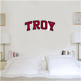 1 ft x 3 ft Fan WallSkinz-Arched Troy