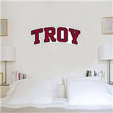 1.5 ft x 4 ft Fan WallSkinz-Arched Troy