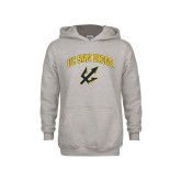Youth Grey Fleece Hood-UC San Diego Arched Over Trident