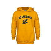 Youth Gold Fleece Hoodie-UC San Diego Arched Over Trident